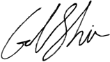 Gal Shir View Insights Signature[1]