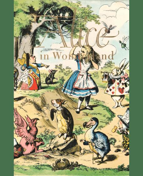 Alice in Wonderland – Paper Book