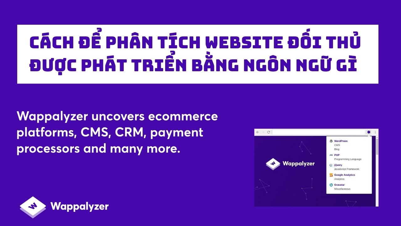 Cách để phân tích website đối thủ được viết bằng ngôn ngữ gì với Wappalyzer